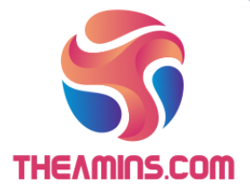 THEAMINS.COM